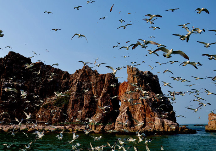 海驴岛在哪,景色如何?几月份去最好?