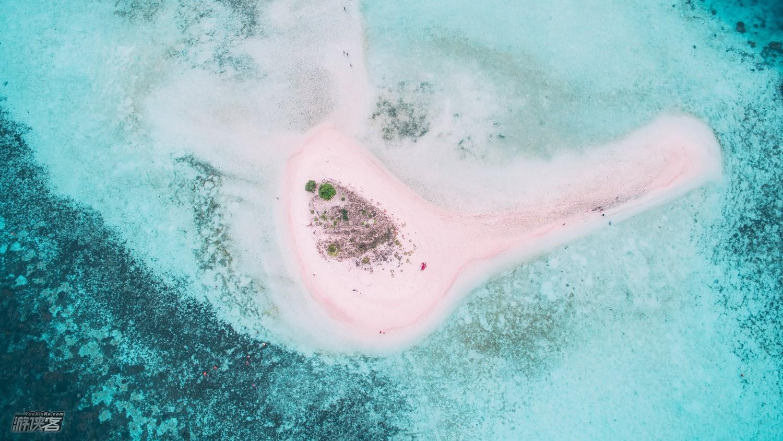科莫多岛在哪儿?粉色沙滩有多美?