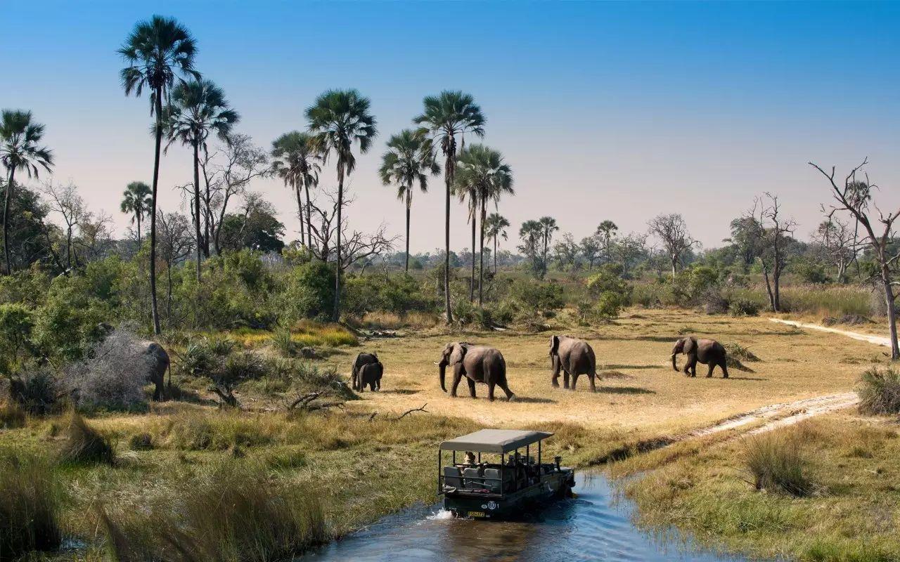 博茨瓦纳面向全球开放落地签,博茨瓦纳旅游景点推荐